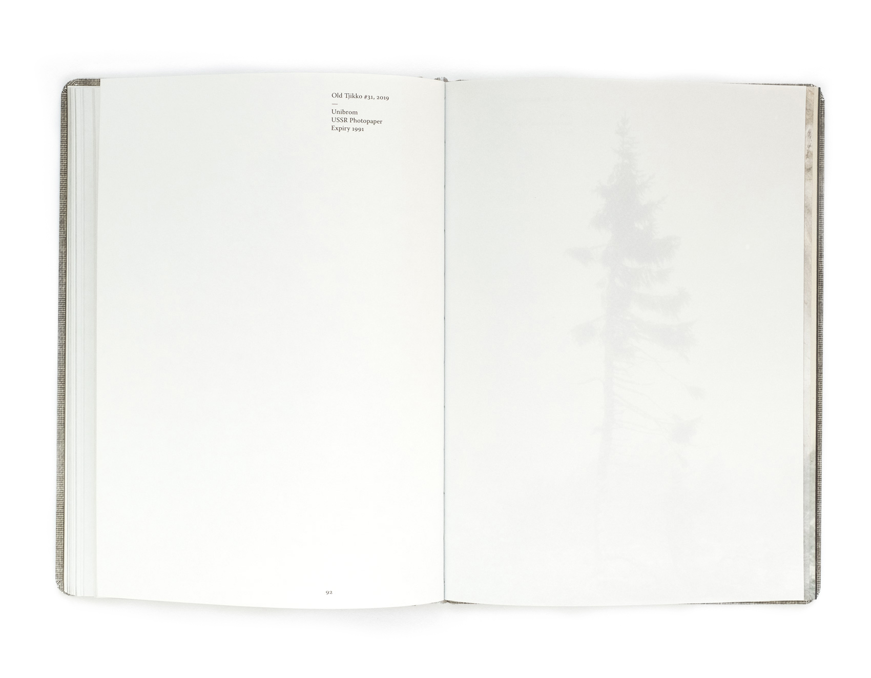 Old Tjikko - spread from the book by Nicolai Howalt