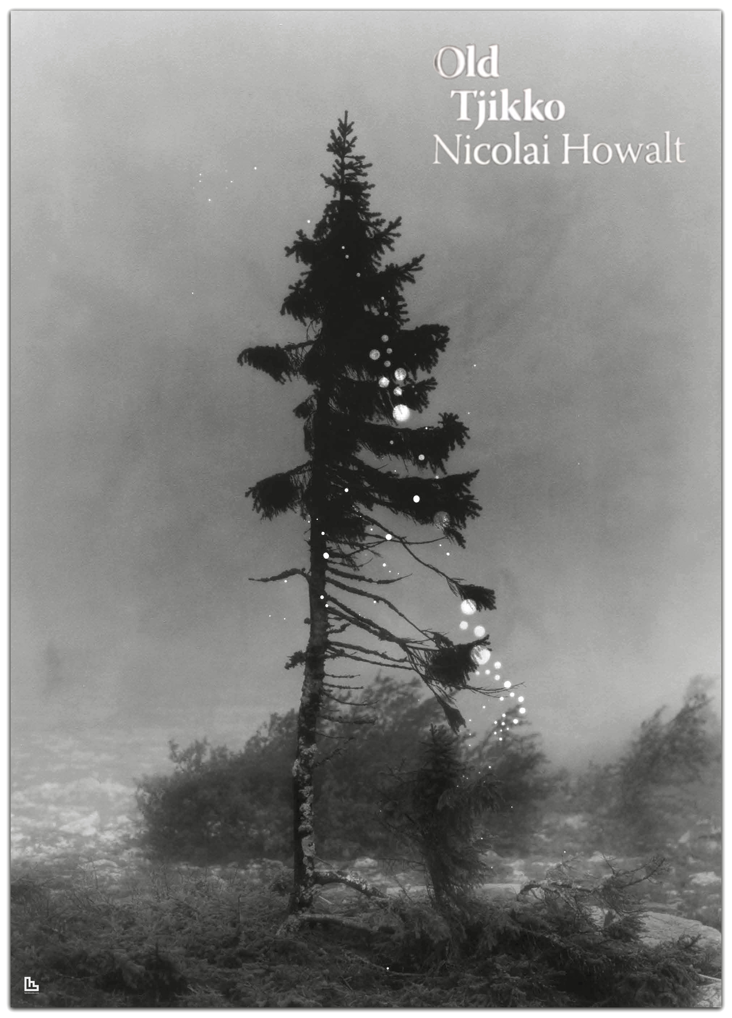 Old Tjikko poster by Nicolai Howalt